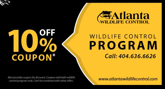wildlife-coupon